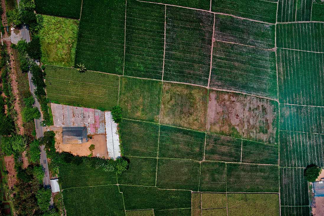 Riaprono le iscrizioni per Agricoltura di precisione a Oristano